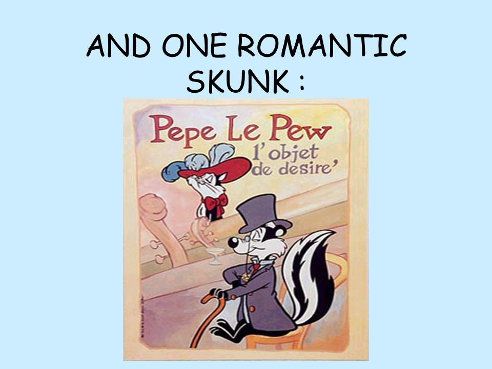 AND ONE ROMANTIC SKUNK :