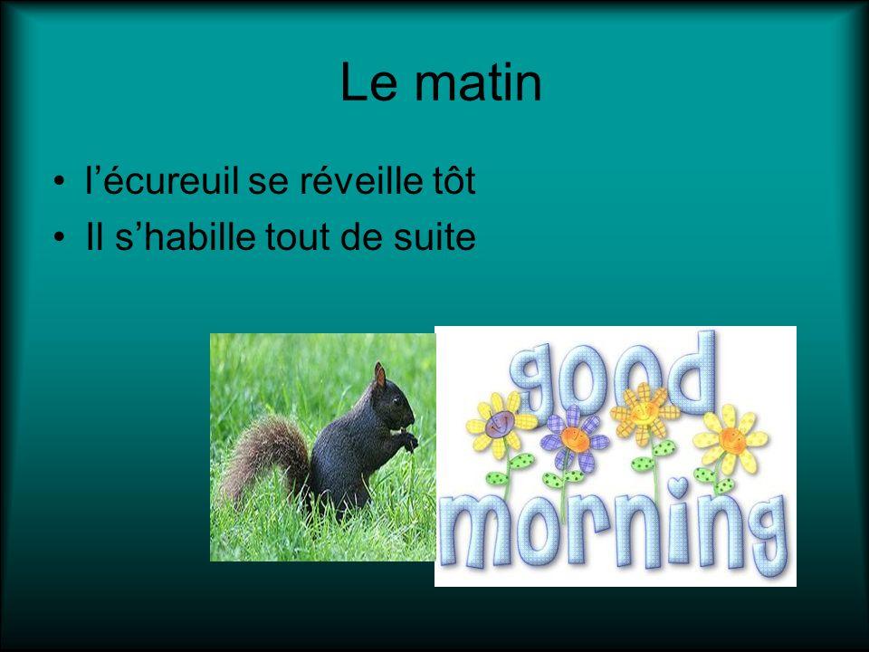 Le matin l'écureuil se réveille tôt Il s'habille tout de suite