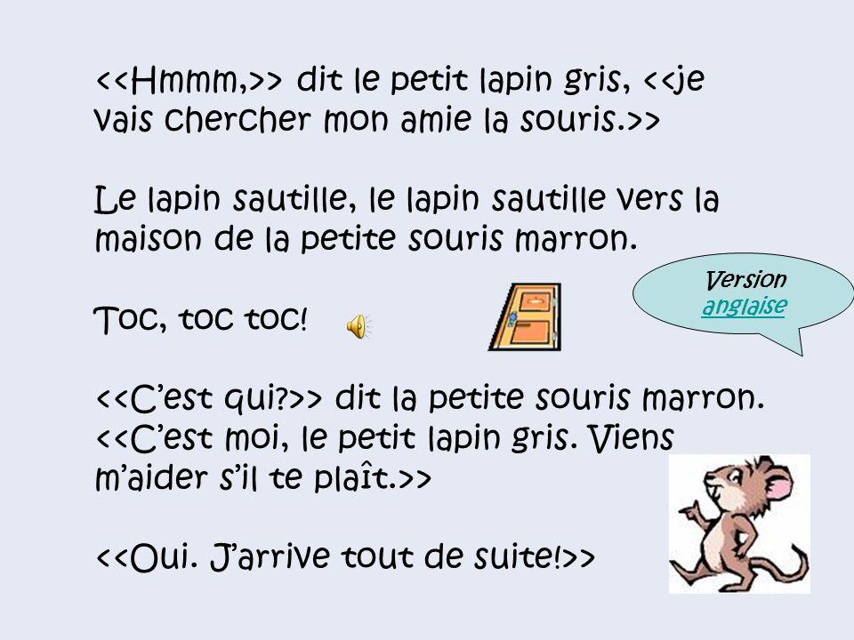 <<C'est qui >> dit la petite souris marron.