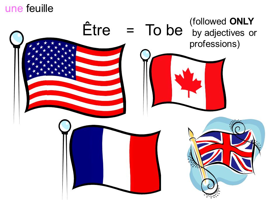 Être = To be une feuille (followed ONLY by adjectives or professions)