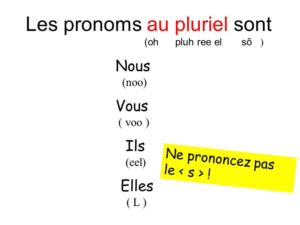 Les pronoms au pluriel sont