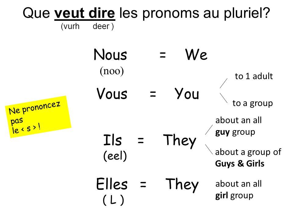 Que veut dire les pronoms au pluriel