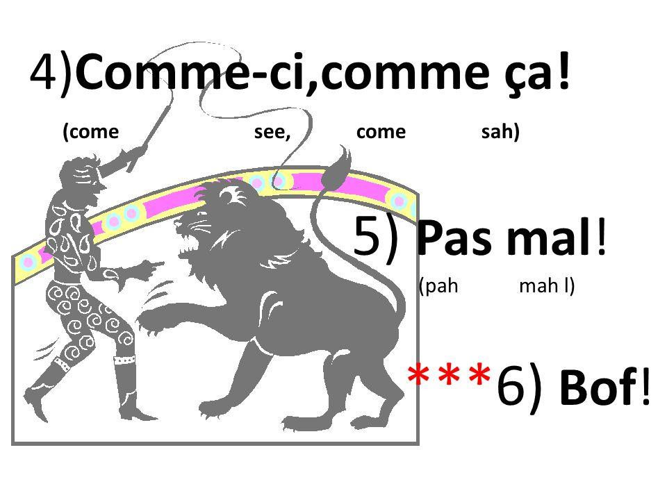 5) Pas mal! ***6) Bof! 4)Comme-ci,comme ça! (come see, come sah)