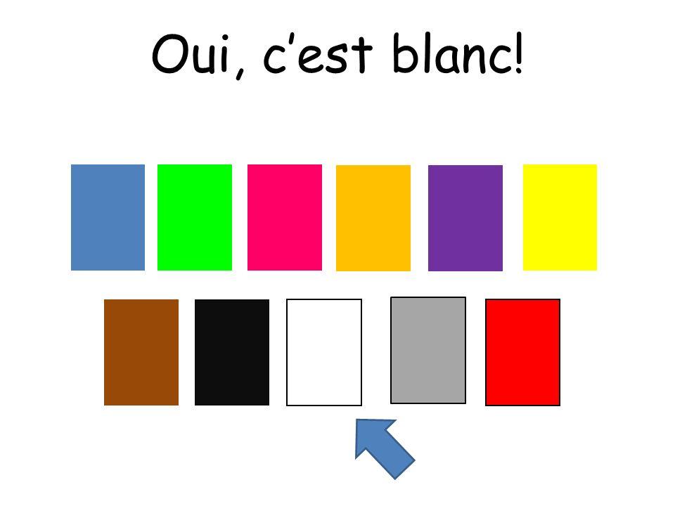 Oui, c'est blanc! Choississez means choose