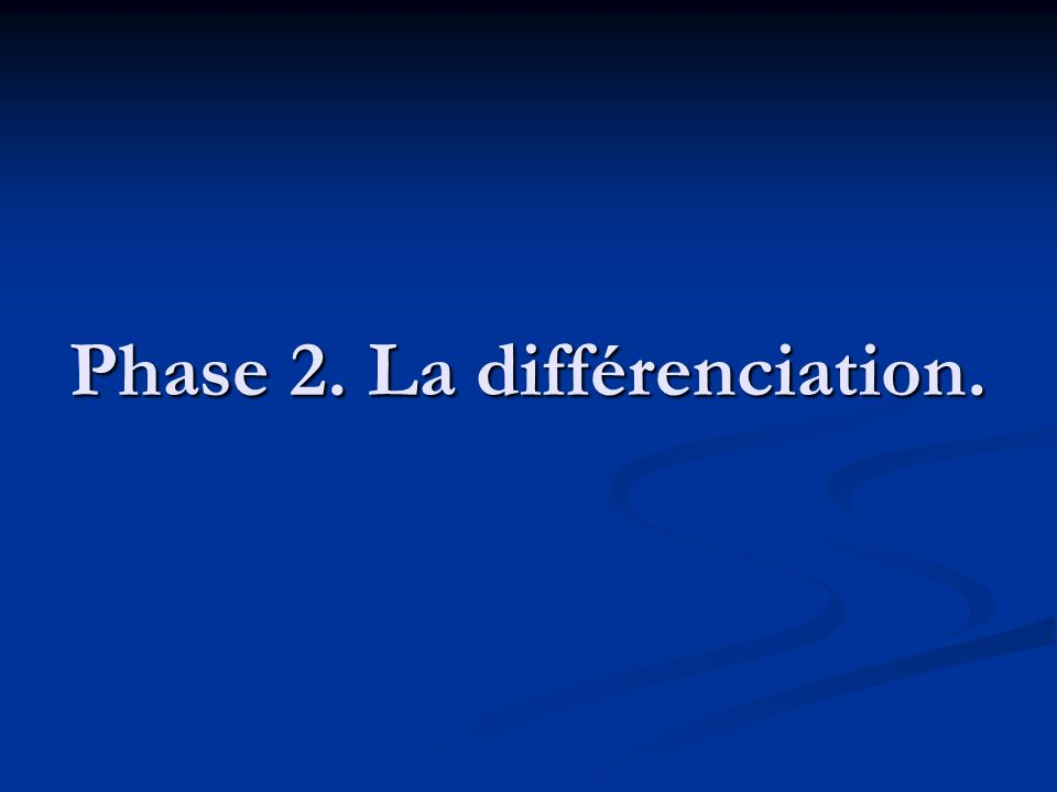 Phase 2. La différenciation.