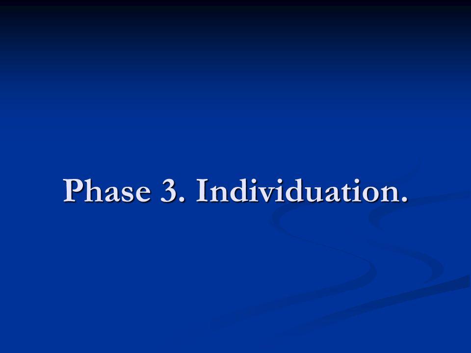 Phase 3. Individuation.