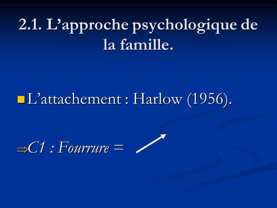 2.1. L'approche psychologique de la famille.