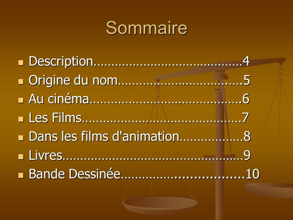 Sommaire Description……………………………………4 Origine du nom………………………….….5