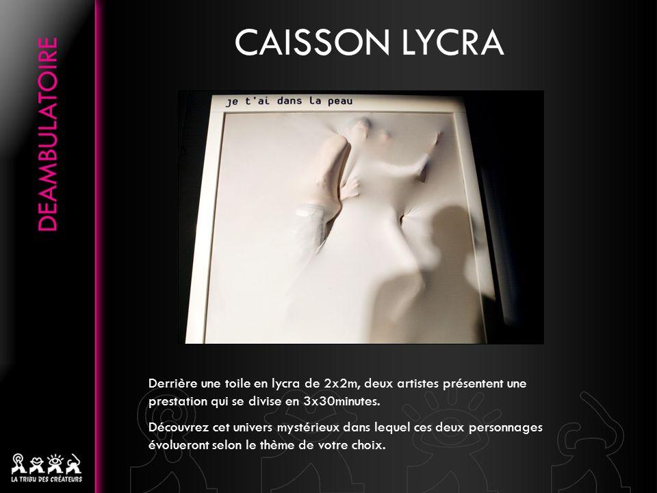 CAISSON LYCRA Derrière une toile en lycra de 2x2m, deux artistes présentent une prestation qui se divise en 3x30minutes.