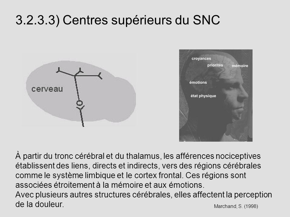 3.2.3.3) Centres supérieurs du SNC