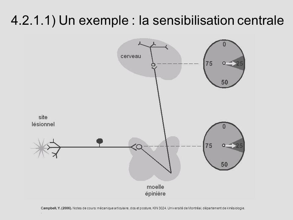 4.2.1.1) Un exemple : la sensibilisation centrale