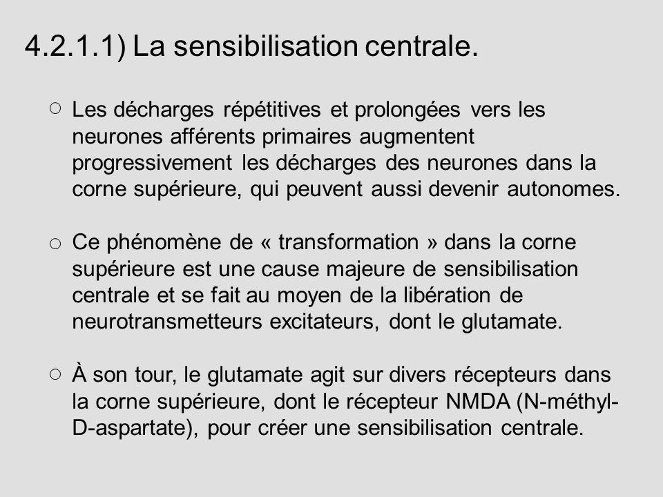 4.2.1.1) La sensibilisation centrale.