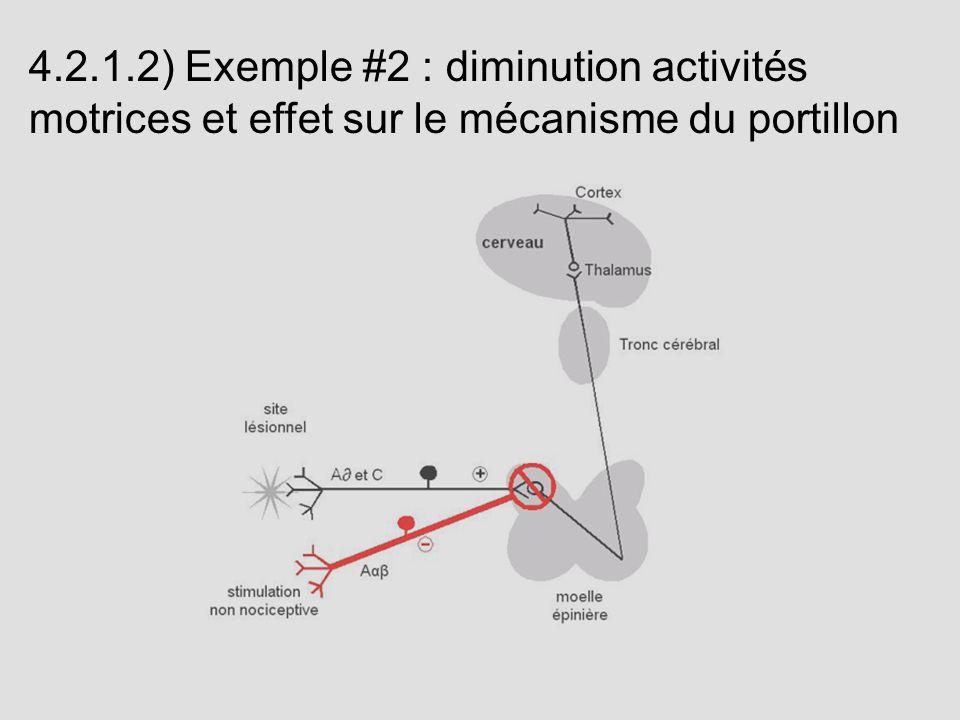 4.2.1.2) Exemple #2 : diminution activités motrices et effet sur le mécanisme du portillon