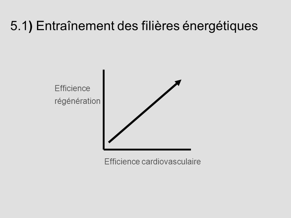 5.1) Entraînement des filières énergétiques