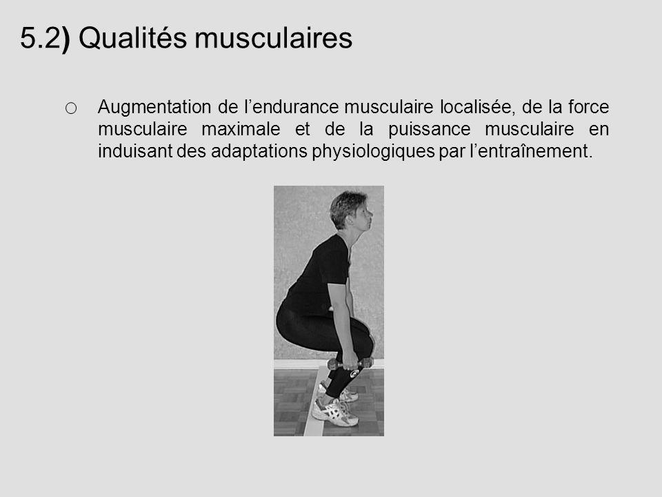 5.2) Qualités musculaires