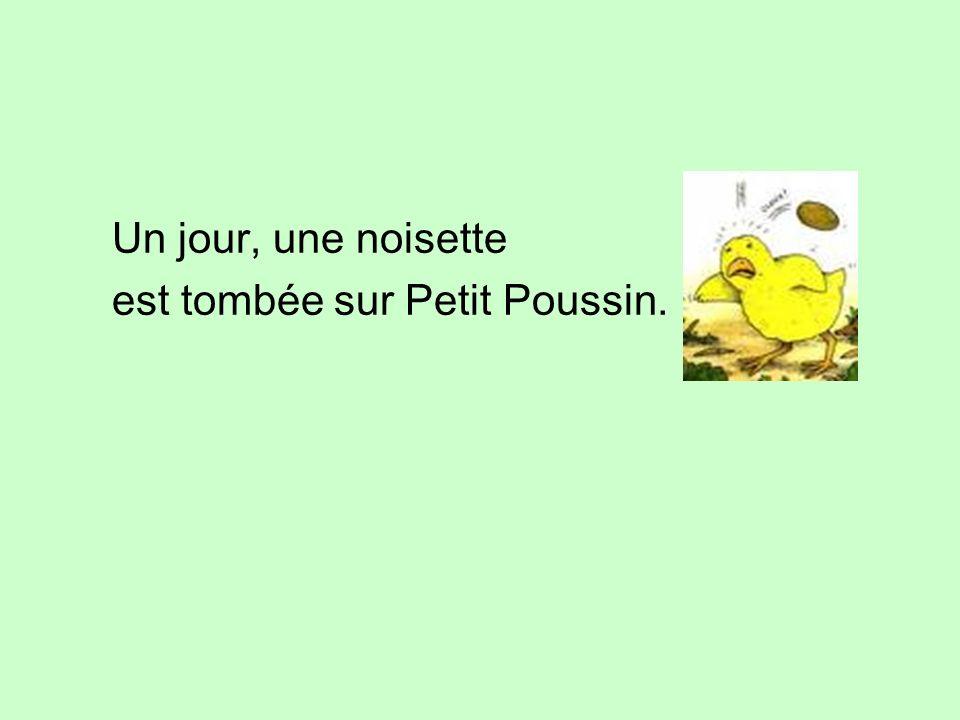 Un jour, une noisette est tombée sur Petit Poussin.