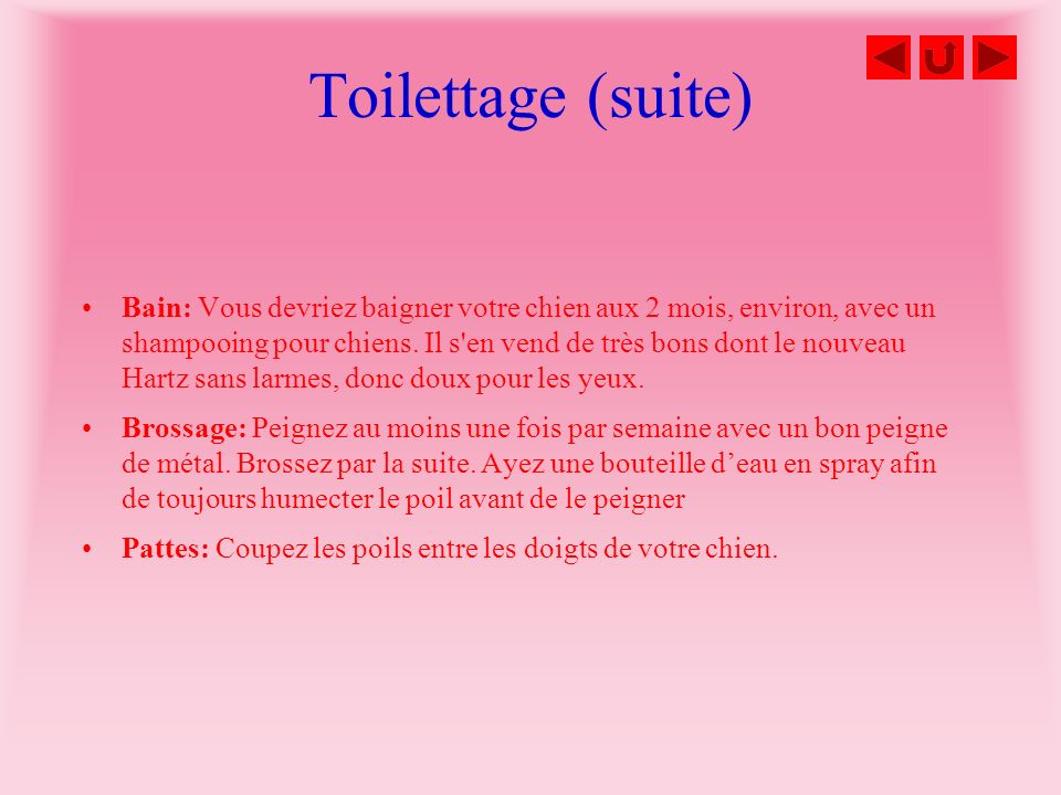 Toilettage (suite)
