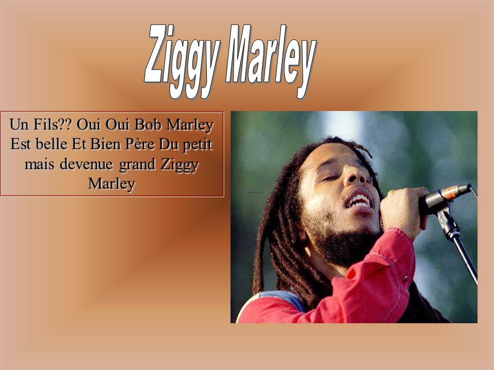 Ziggy Marley Un Fils .