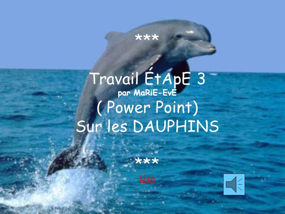 *** Travail ÉtApE 3 par MaRiE-EvE ( Power Point) Sur les DAUPHINS *** Lien