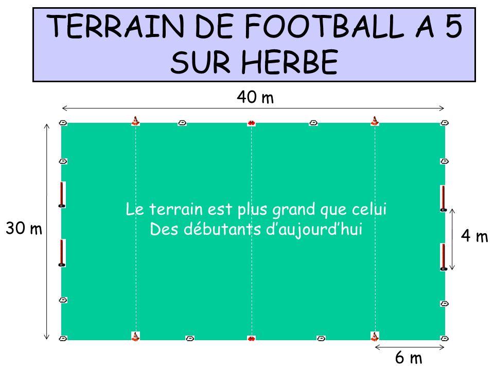 TERRAIN DE FOOTBALL A 5 SUR HERBE