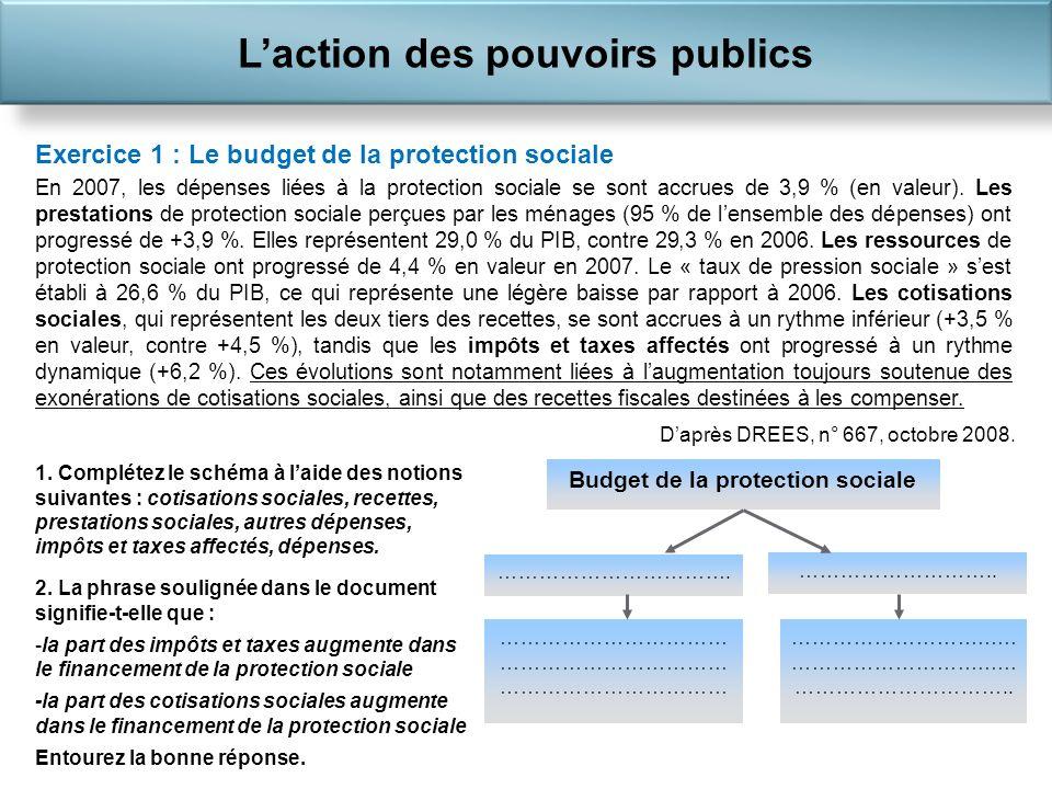 L'action des pouvoirs publics Budget de la protection sociale