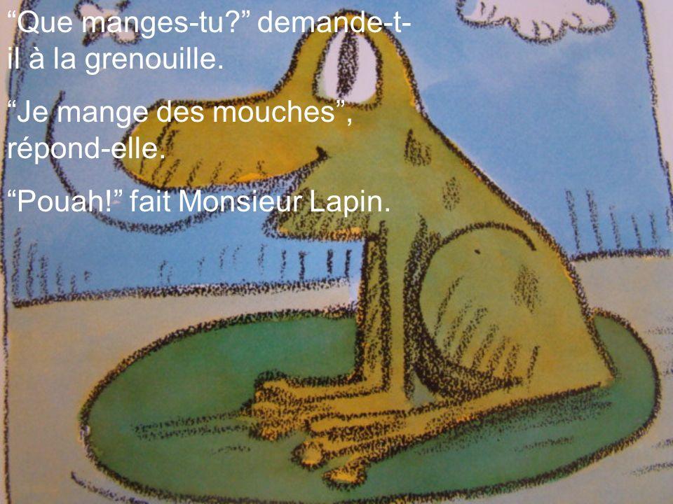 Que manges-tu demande-t-il à la grenouille.