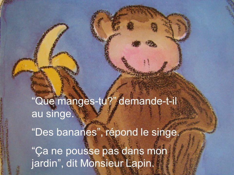 Que manges-tu demande-t-il au singe.