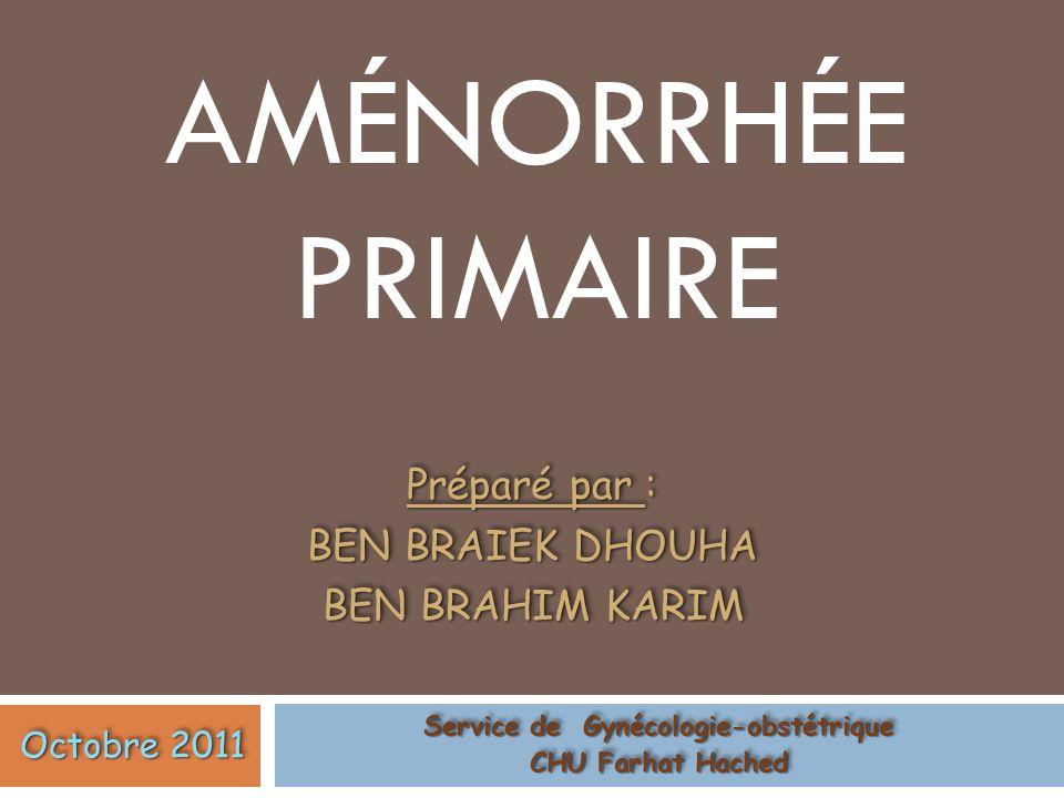 Préparé par : BEN BRAIEK DHOUHA BEN BRAHIM KARIM
