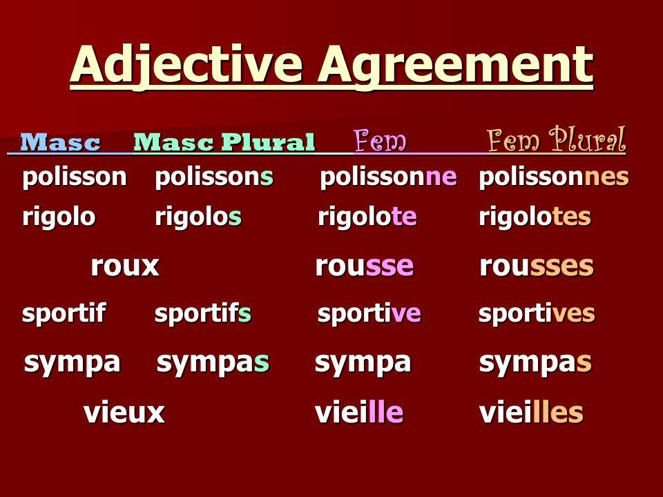 Adjective Agreement roux rousse rousses sympa sympas sympa sympas