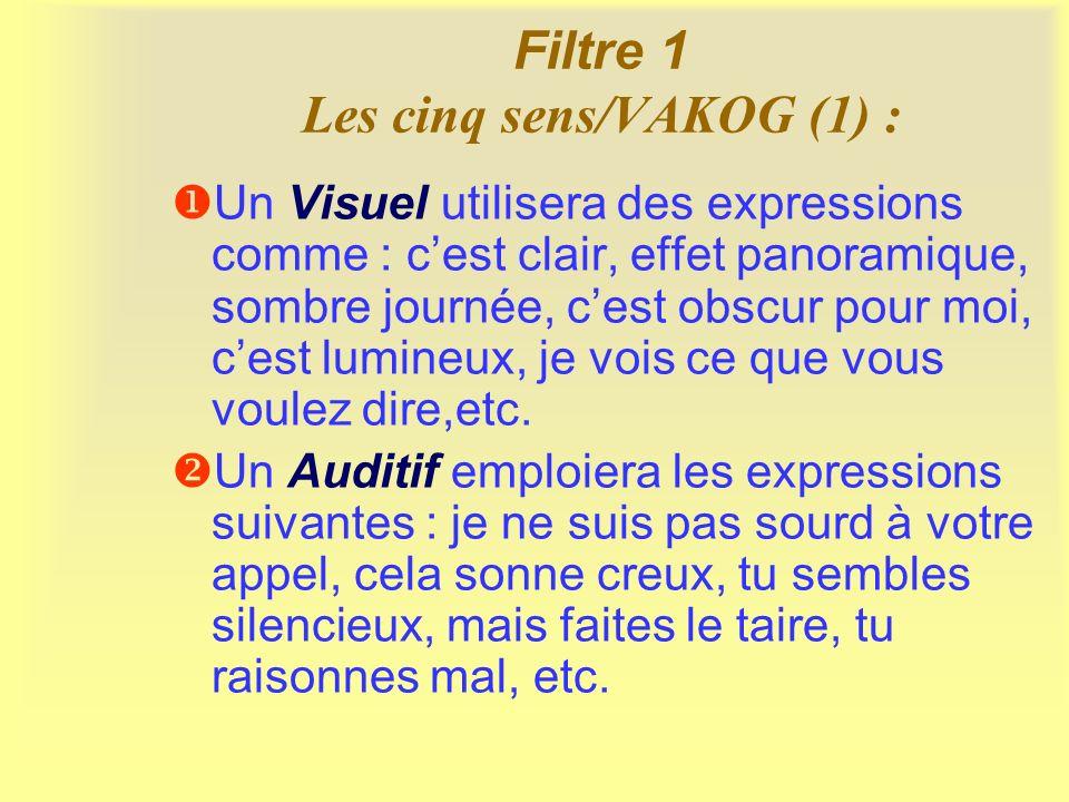 Filtre 1 Les cinq sens/VAKOG (1) :