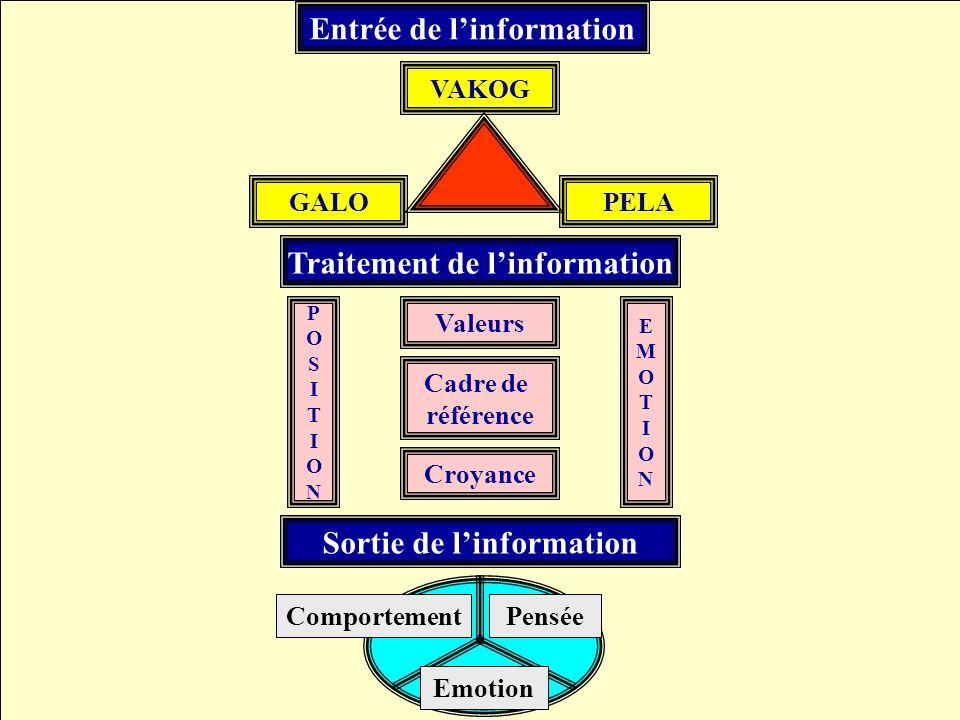 Résumé global Entrée de l'information Traitement de l'information