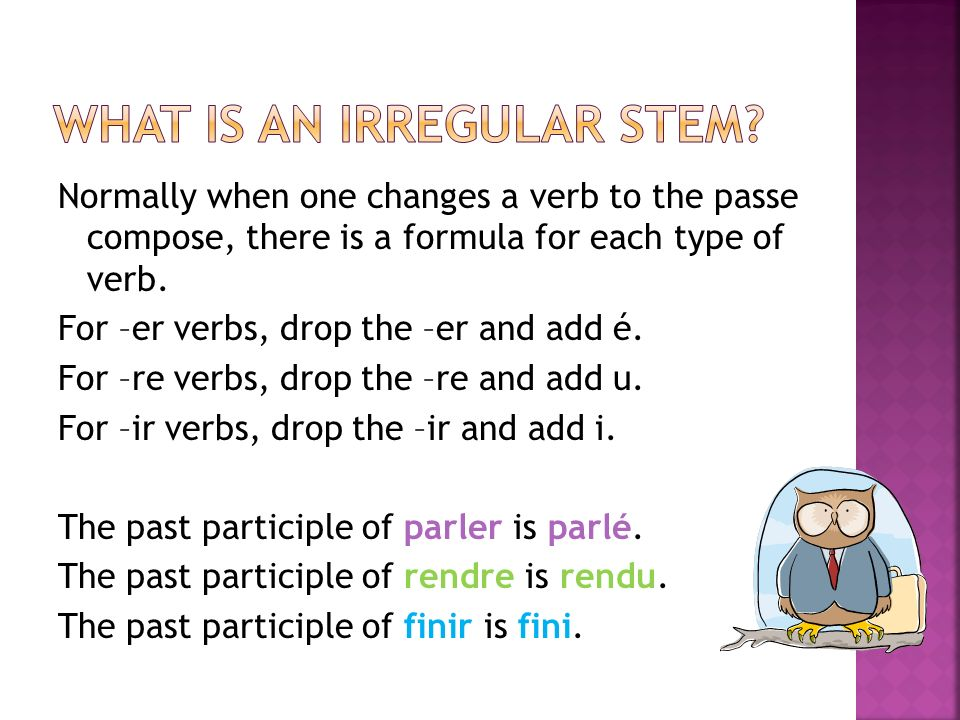 What is an irregular stem