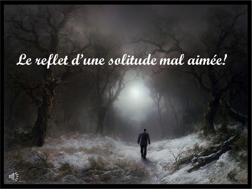 Le reflet d'une solitude mal aimée!