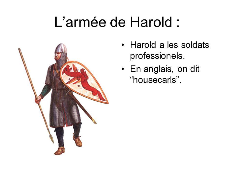 L'armée de Harold : Harold a les soldats professionels.