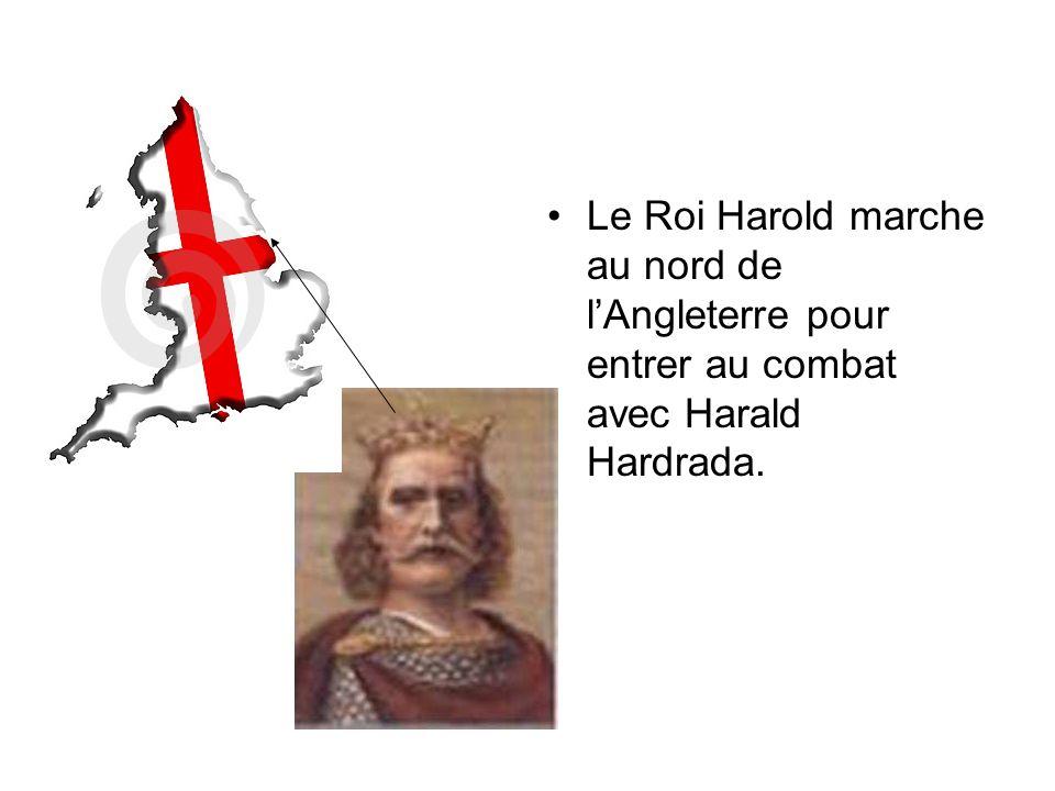 Le Roi Harold marche au nord de l'Angleterre pour entrer au combat avec Harald Hardrada.