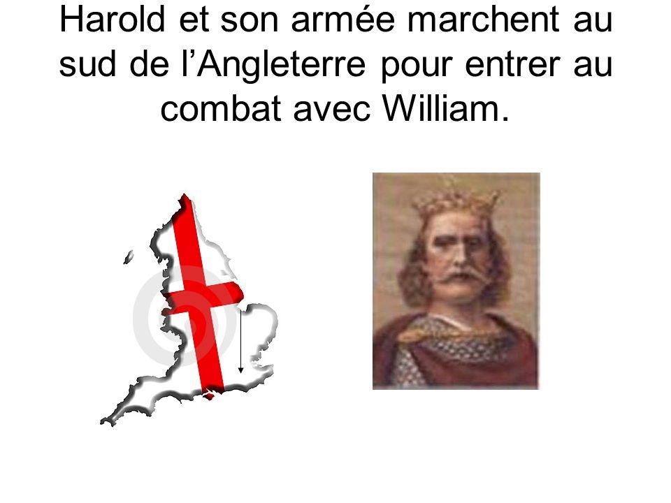 Harold et son armée marchent au sud de l'Angleterre pour entrer au combat avec William.