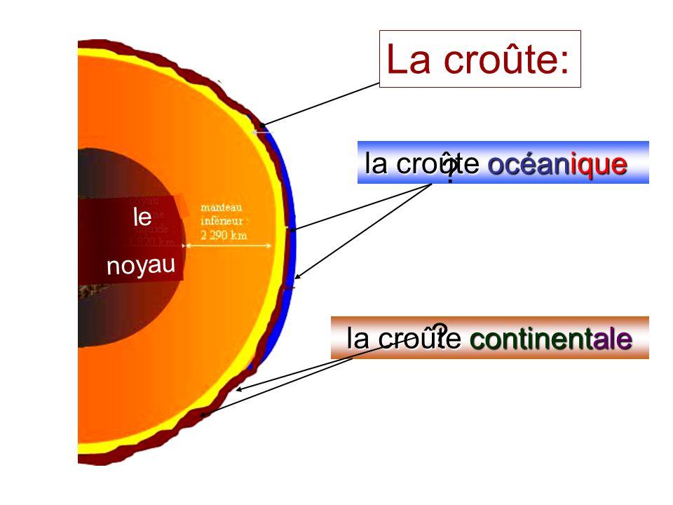 La croûte: la croûte océanique Un océan la croûte continentale