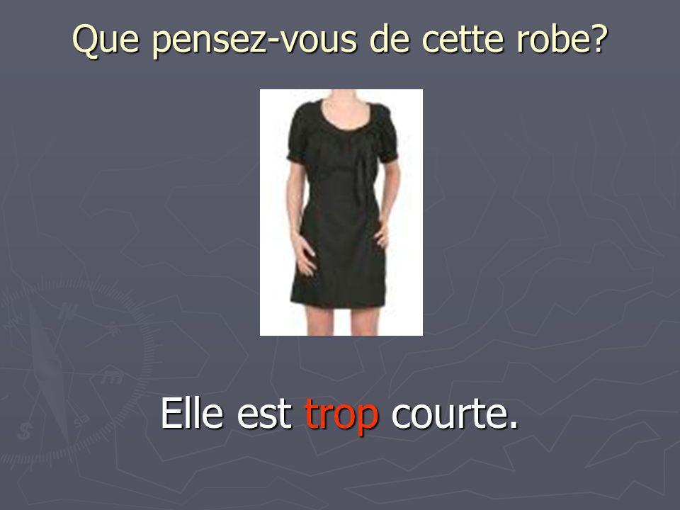 Que pensez-vous de cette robe