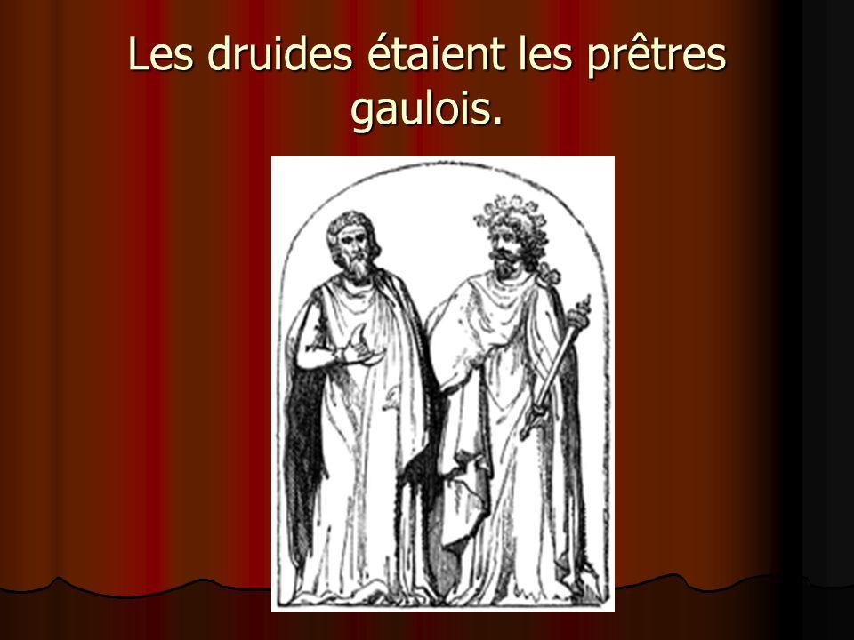 Les druides étaient les prêtres gaulois.