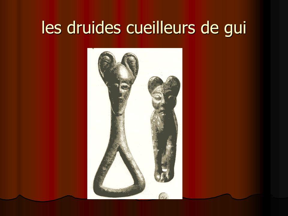 les druides cueilleurs de gui