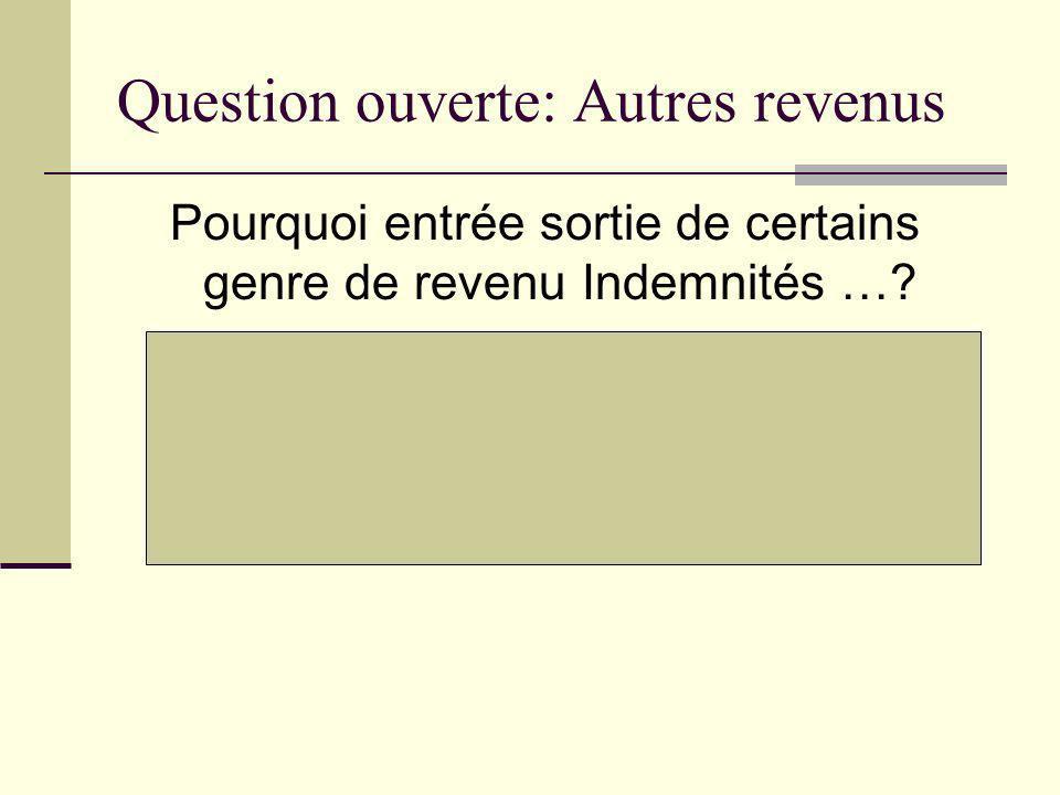 Question ouverte: Autres revenus