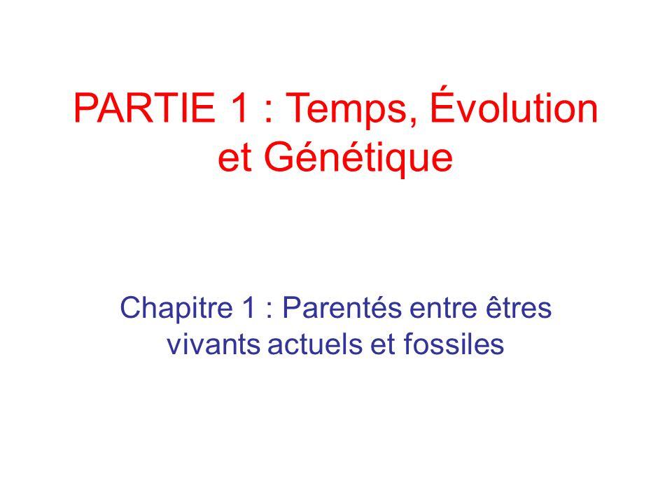 PARTIE 1 : Temps, Évolution et Génétique