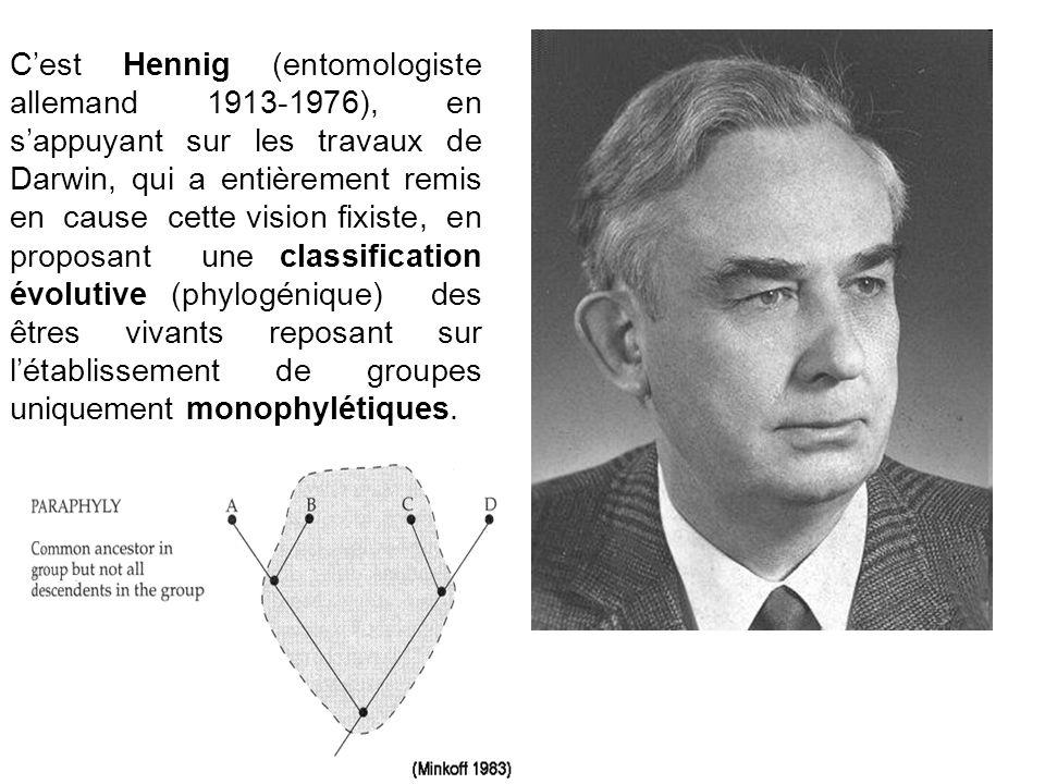 C'est Hennig (entomologiste allemand 1913-1976), en s'appuyant sur les travaux de Darwin, qui a entièrement remis en cause cette vision fixiste, en proposant une classification évolutive (phylogénique) des êtres vivants reposant sur l'établissement de groupes uniquement monophylétiques.