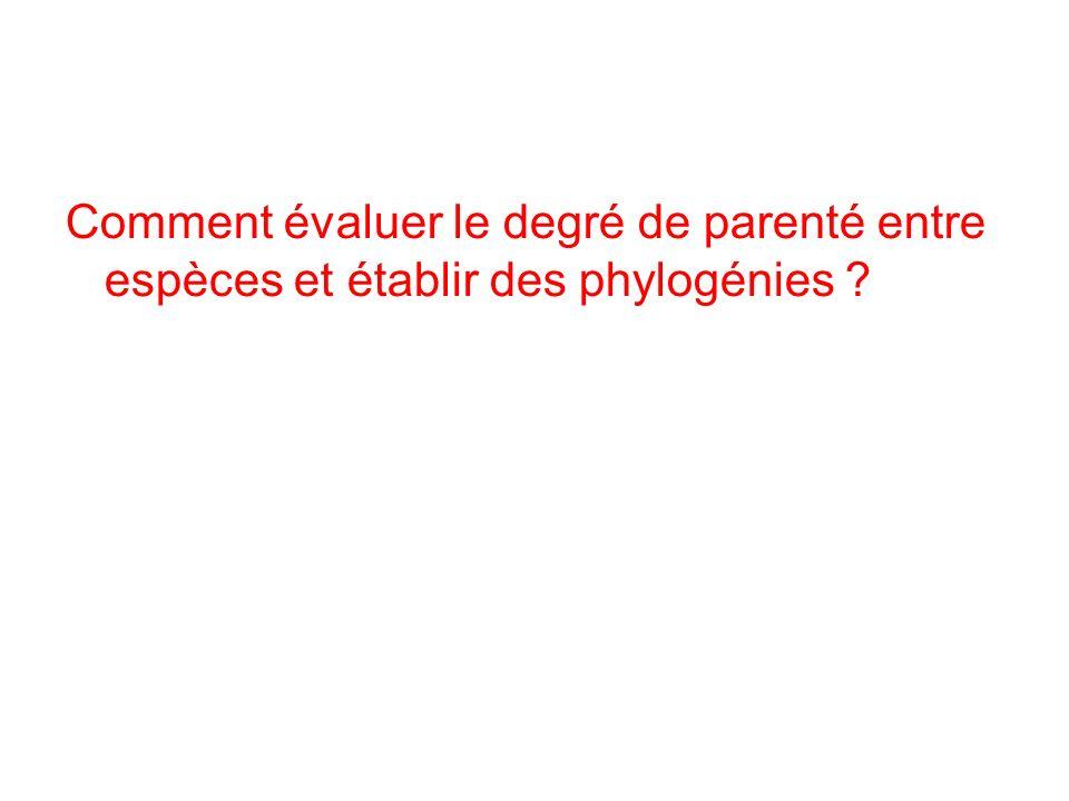 Comment évaluer le degré de parenté entre espèces et établir des phylogénies