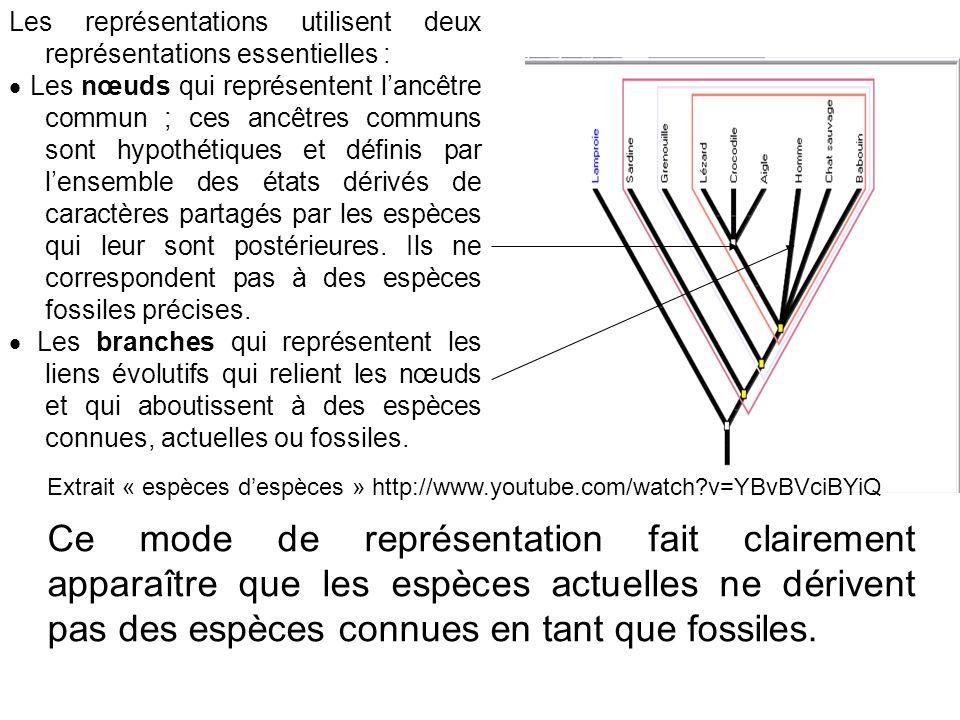 Les représentations utilisent deux représentations essentielles :