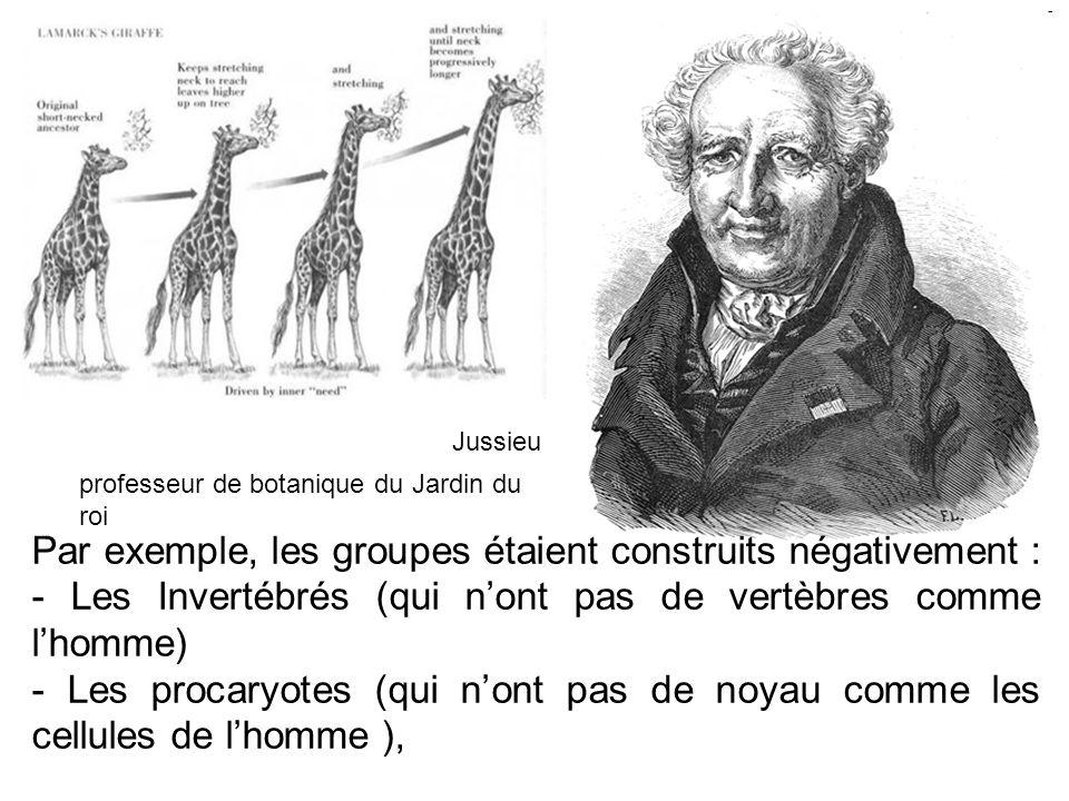Jussieu professeur de botanique du Jardin du roi.