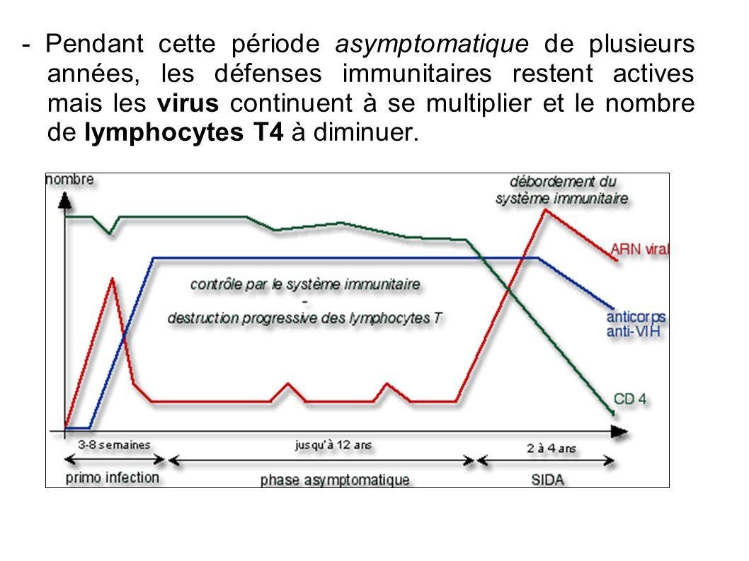 - Pendant cette période asymptomatique de plusieurs années, les défenses immunitaires restent actives mais les virus continuent à se multiplier et le nombre de lymphocytes T4 à diminuer.