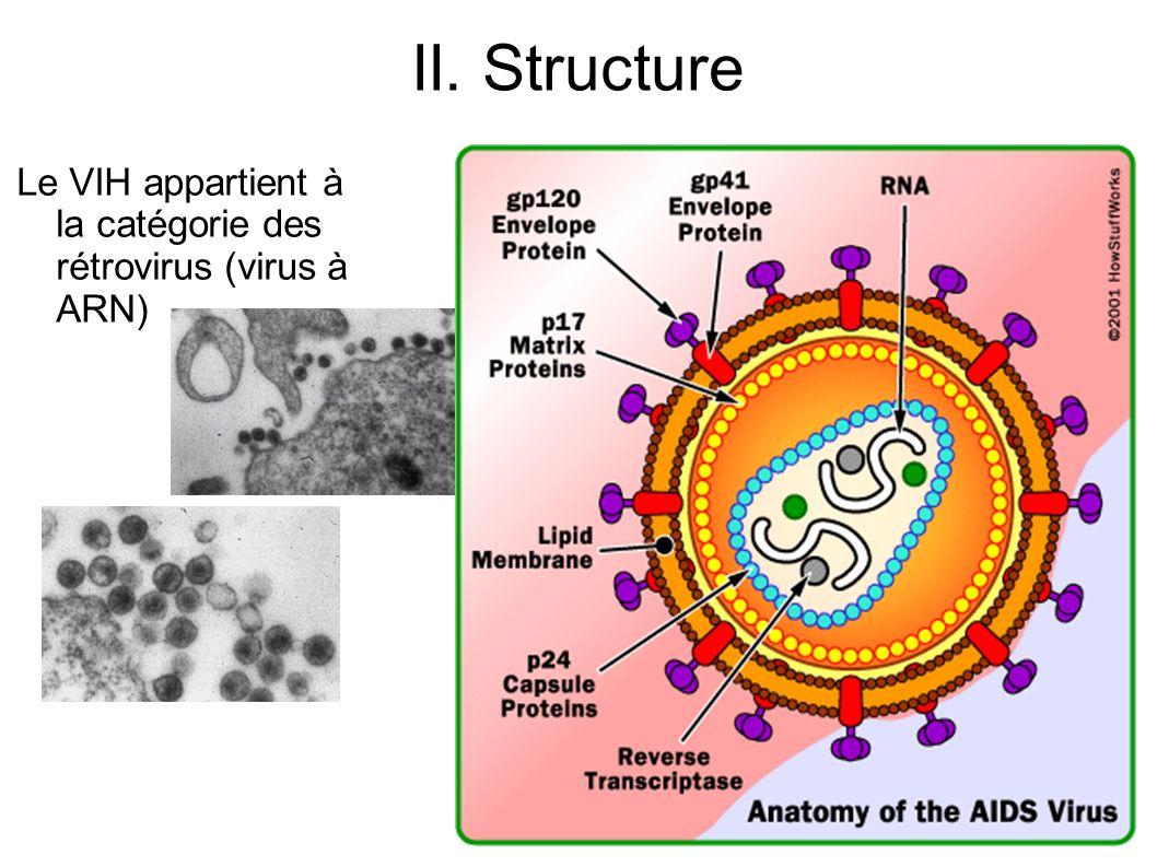 II. Structure Le VIH appartient à la catégorie des rétrovirus (virus à ARN)