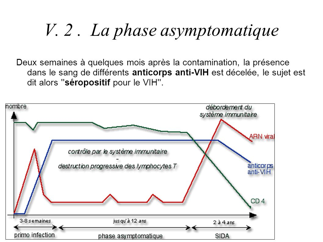 V. 2 . La phase asymptomatique