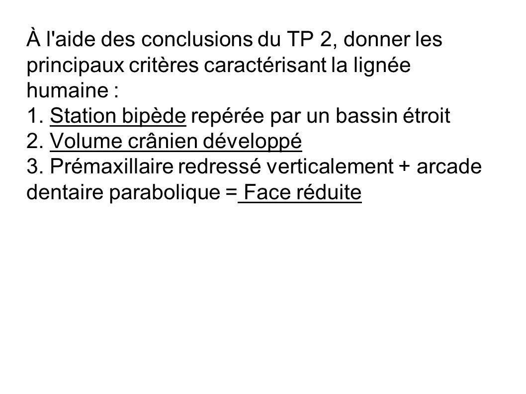 À l aide des conclusions du TP 2, donner les principaux critères caractérisant la lignée humaine :
